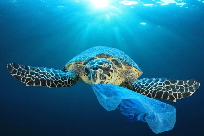 het plastic probleem